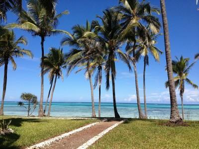 PRVOMAJSKO RAZVAJANJE! 7 nočitev na Zanzibarju (letalo + apartma ob morju + zajtrk) samo za 600 eur!