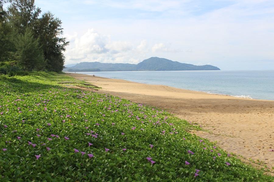 PRVOMAJSKI TAJSKI DOPUST! 10 nočitev na otoku Phuket (letalo + hotel) že za 539 eur